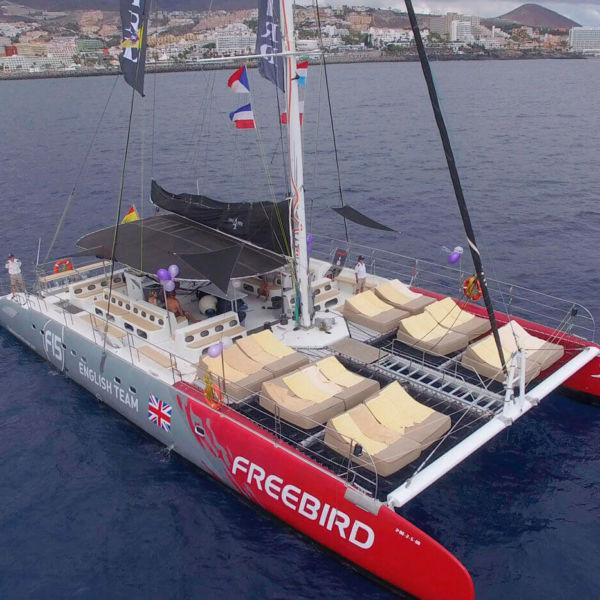 freebird catamaran tenerife