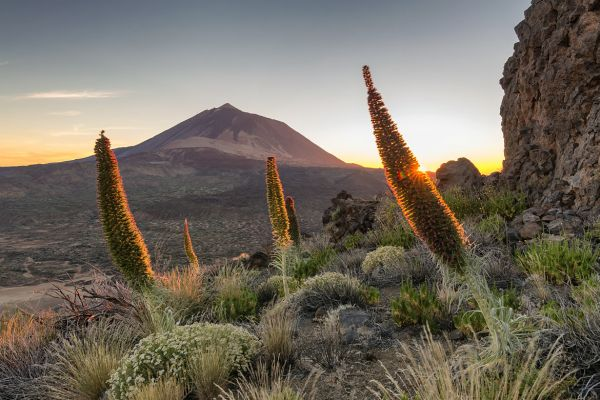 Tenerife sightseeing