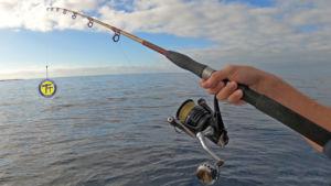 pesca en Tenerife