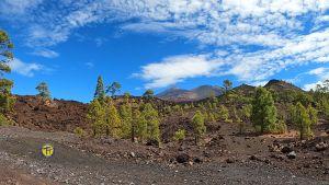 quad Teide